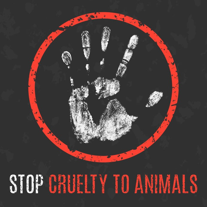 Photo: Stop Cruelty to Animals